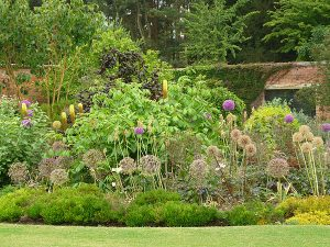 Garden 300x225 - New Venue - Elvaston Castle
